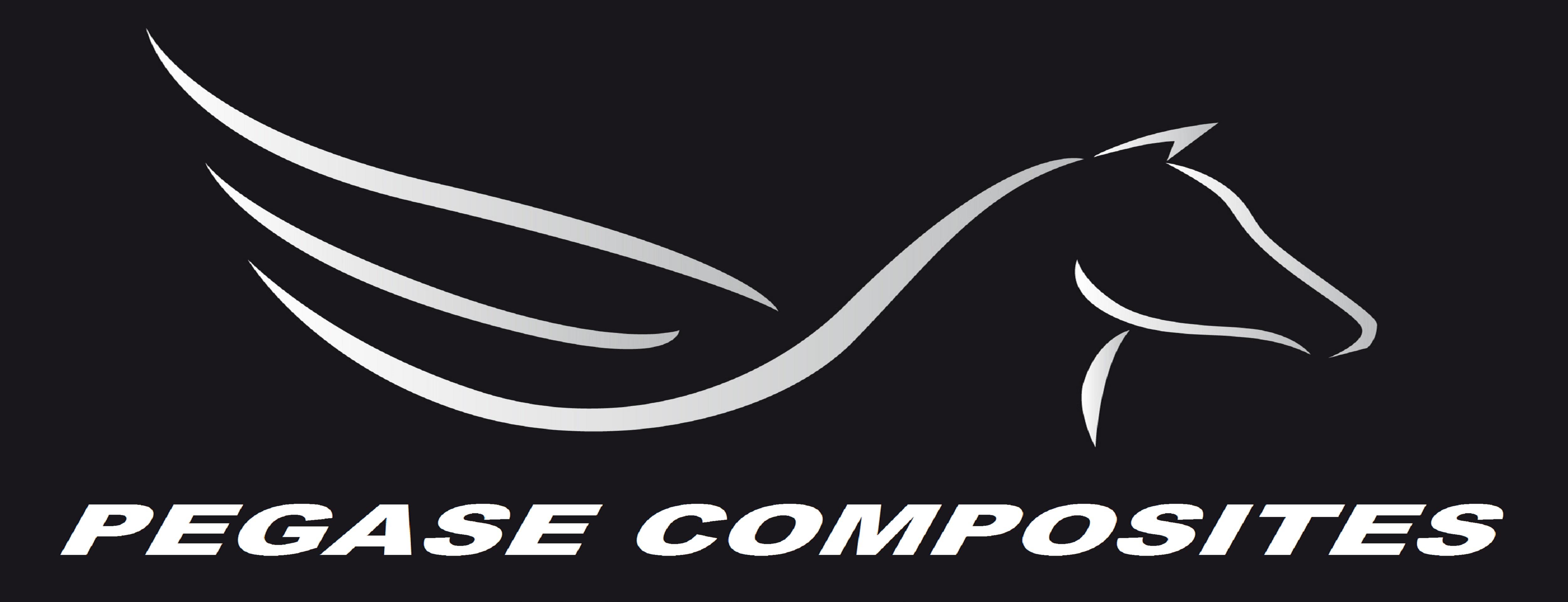 logo entreprise, logo pegase